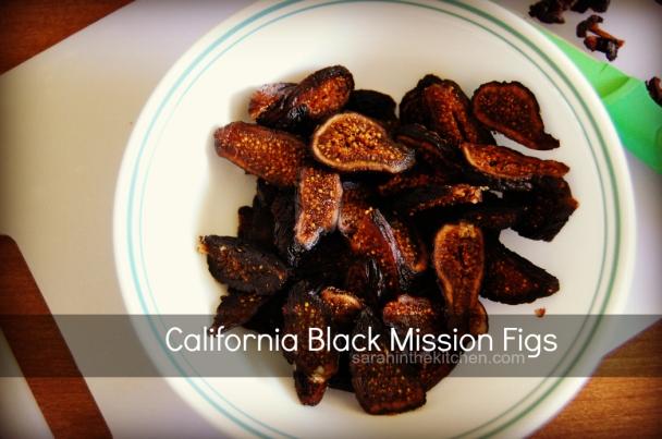 EWR Fig Black Mission